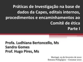 Profa . Ludhiana  Bertoncello ,  Ms Sandra Gomes Prof. Hugo Pires,  Ms