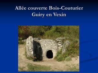 Allée couverte Bois-Couturier  Guiry en Vexin