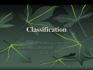 How Animals are Classified