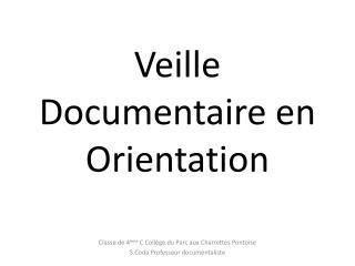 Veille Documentaire en Orientation