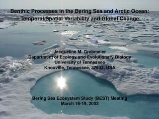 Benthic Processes in the Bering Sea and Arctic Ocean: