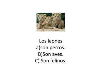 Los leones a)son perros. B)Son aves. C) Son felinos.