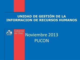 UNIDAD DE GESTIÓN DE LA INFORMACION DE RECURSOS HUMANOS Noviembre 2013 PUCON