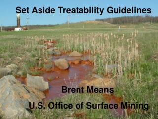 Set Aside Treatability Guidelines