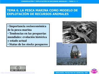 TEMA 6. LA PESCA MARINA COMO MODELO DE EXPLOTACIÓN DE RECURSOS ANIMALES