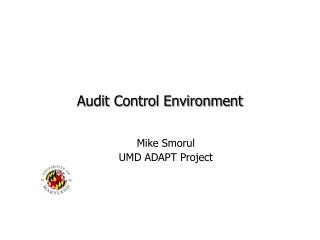 Audit Control Environment