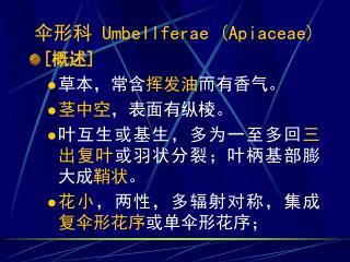 伞形科  Umbellferae (Apiaceae) [ 概述] 草本,常含 挥发油 而有香气。 茎中空 ,表面有纵棱。