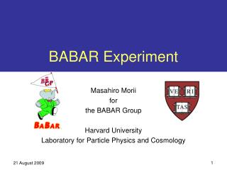 BABAR Experiment