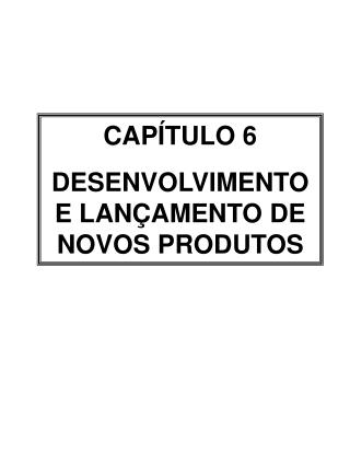 CAP�TULO 6 DESENVOLVIMENTO E LAN�AMENTO DE NOVOS PRODUTOS
