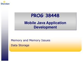 Memory and Memory Issues Data Storage