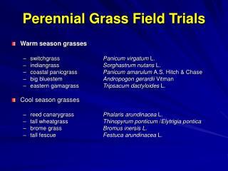 Perennial Grass Field Trials