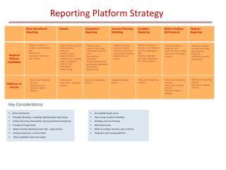 Reporting Platform Strategy