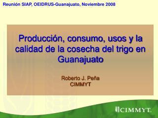 Producci n, consumo, usos y la calidad de la cosecha del trigo en Guanajuato   Roberto J. Pe a CIMMYT
