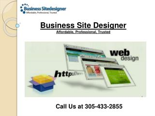 Professional Web Development and Web Designing Company