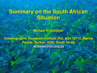 Summary on the South African Situation Michael H. Schleyer
