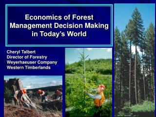 Economics of Forest Management Decision Making  in Today s World