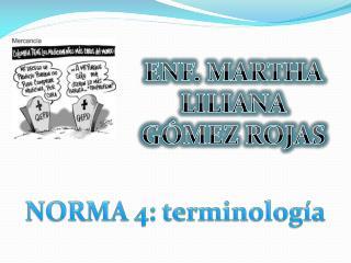 NORMA 4: terminología