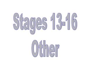 Stages 13-16 Other