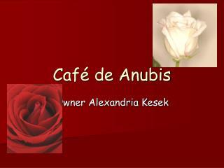 Café de Anubis