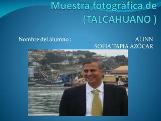 Muestra  fotogràfica  de  (TALCAHUANO )
