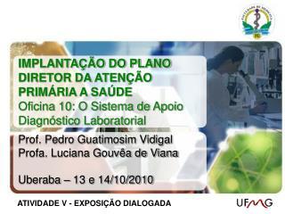 Prof. Pedro Guatimosim Vidigal Profa. Luciana Gouvêa de Viana Uberaba – 13 e 14/10/2010
