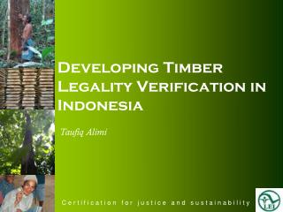 Developing Timber Legality Verification in Indonesia
