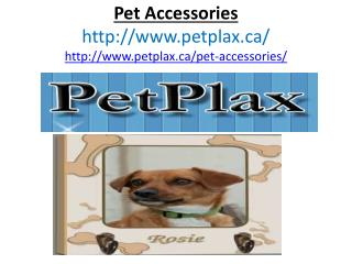 Pet for gift, Pet Accessories