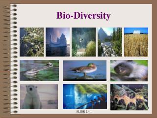 Bio-Diversity