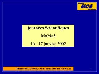 Journées Scientifiques  MoMaS 16 - 17 janvier 2002