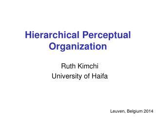 Hierarchical Perceptual Organization