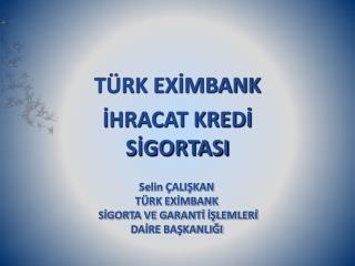 TÜRK EXİMBANK İHRACAT KREDİ SİGORTASI