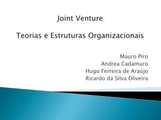 Joint Venture Teorias e Estruturas Organizacionais