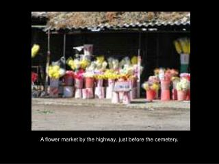 A flower market by the highway, just before the cemetery.