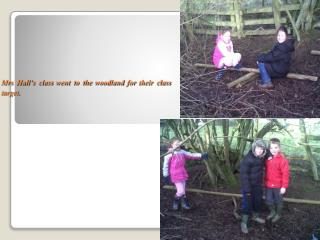 Mrs Hall's class went to the woodland for their class target.