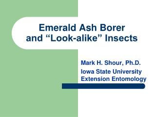 Emerald Ash Borer and �Look-alike� Insects