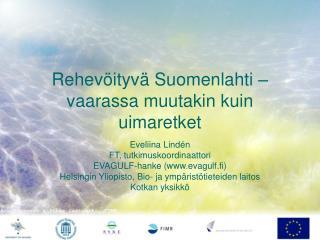 Rehevöityvä Suomenlahti – vaarassa muutakin kuin uimaretket