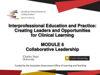 Interprofessional Education and Practice:  Creating Leaders and Opportunities