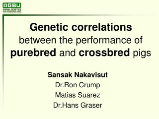 Genetic correlations between the performance of purebred and crossbred pigs