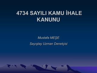 4734 SAYILI KAMU ?HALE KANUNU Mustafa ME?E Say??tay Uzman Denet�isi