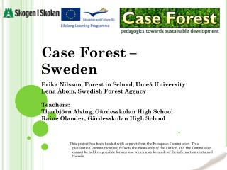 Case Forest –  Sweden