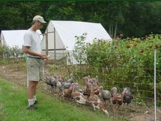 Growing Small Farms: Promoting Sustainable Agriculture in Chatham ...
