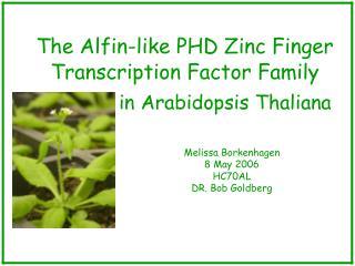 The Alfin-like PHD Zinc Finger Transcription Factor Family