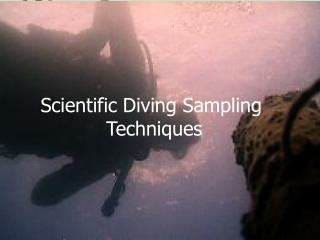 Scientific Diving Sampling       Techniques