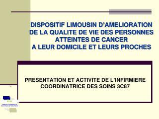 PRESENTATION ET ACTIVITE DE L�INFIRMIERE COORDINATRICE DES SOINS 3C87