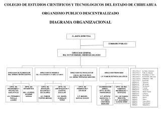 COLEGIO DE ESTUDIOS CIENTIFICOS Y TECNOLOGICOS DEL ESTADO DE CHIHUAHUA  ORGANISMO PUBLICO DESCENTRALIZADO  DIAGRAMA ORGA