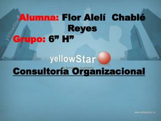 """Alumna:  Flor Alelí  Chablé Reyes Grupo:  6"""" H"""" Consultoría  Organizacional"""