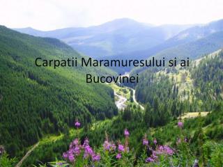Carpatii Maramuresului si ai Bucovinei