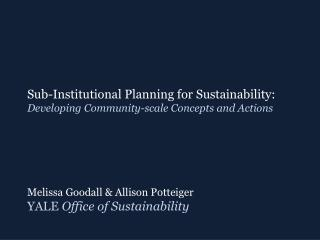 Sub-Institutional Planning for Sustainability:  Developing Community-scale Concepts and Actions
