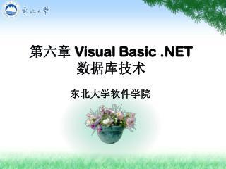 第六章  Visual Basic .NET数据库技术