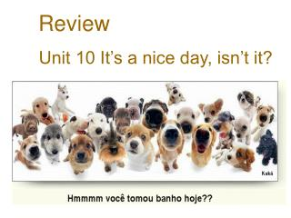 Review Unit 10 It's a nice day, isn't it?
